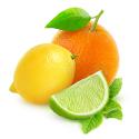 Limón y naranjas